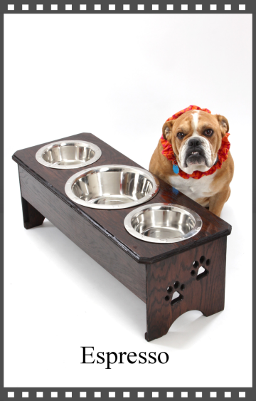 3 Bowl Feeder - 2 qt Bowls for Food & 3 qt Bowl for Water